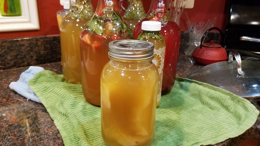 Leftover SCOBY & starter liquid to pass on to a friend.